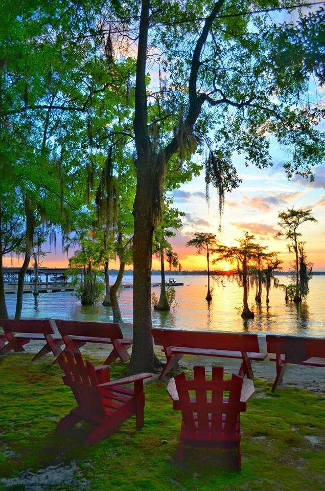 8. Cypress Trees in the water and beautiful skies at sunset, this scene from White Lake is postcard-worthy.