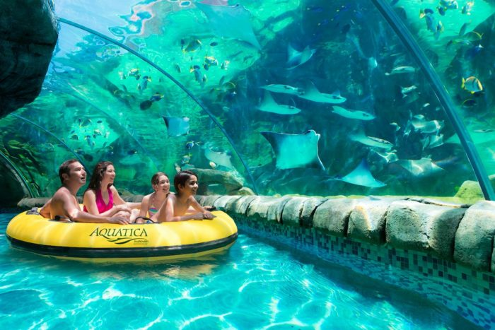 7. SeaWorld has some pretty amazing views while you soak up the sun and float along their waterways.
