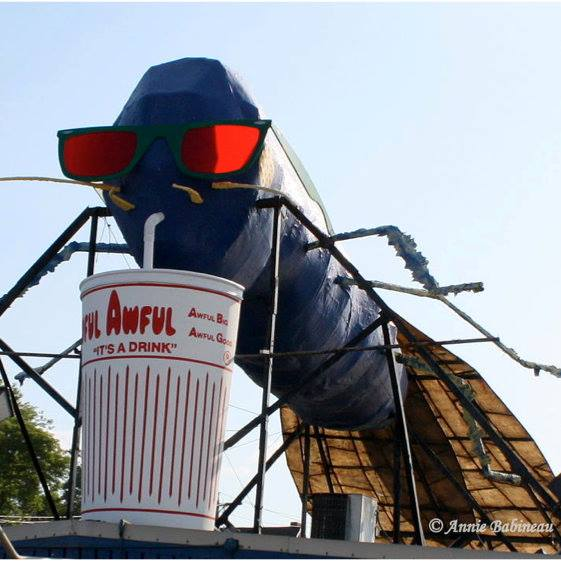 7. Cooler: The Big Blue Bug wearing sunglasses might be one of the coolest things I've seen in Rhode Island and beyond.