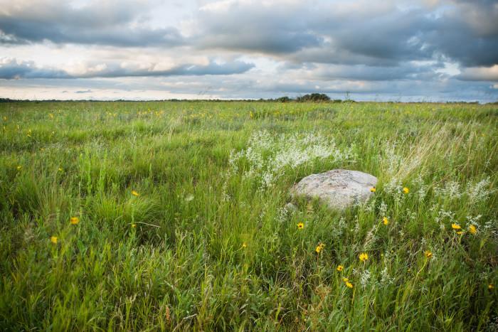 5. Bluestem Prairie (Scientific and Natural Area)