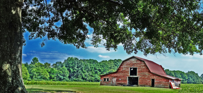 14. Picture-perfect rural scenes.