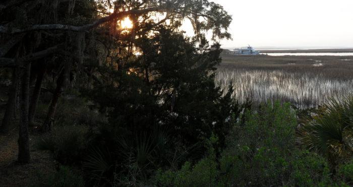 4. Sapelo Island