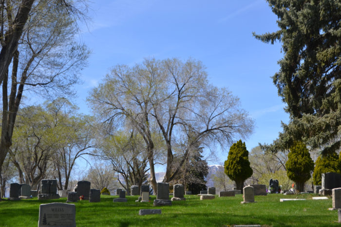 Next, take a stroll through the famed Rose Hill Cemetery.