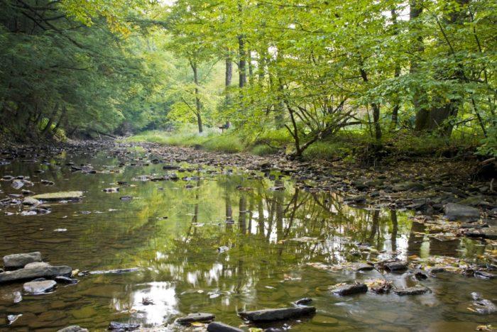 Tidioute Creek
