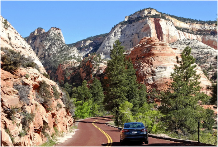 4. The Zion-Mt. Carmel Highway was completed in 1930.