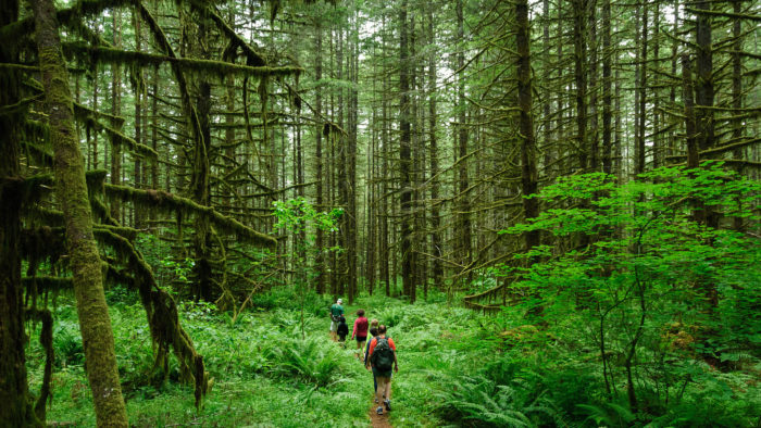 10. Hiking in Oregon is a wonderful, rewarding way to spend free time.