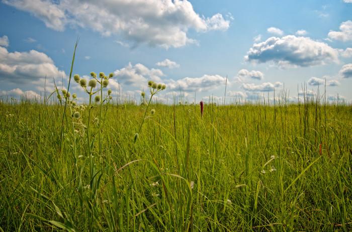 12. Pretty Prairie (Population: 680)