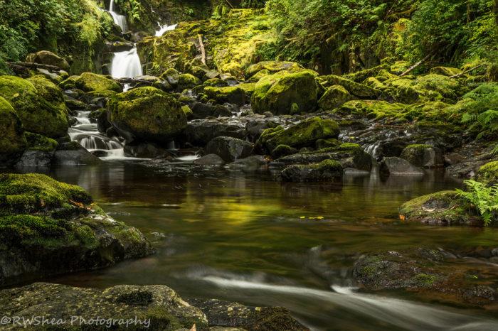 10. Sweet Creek