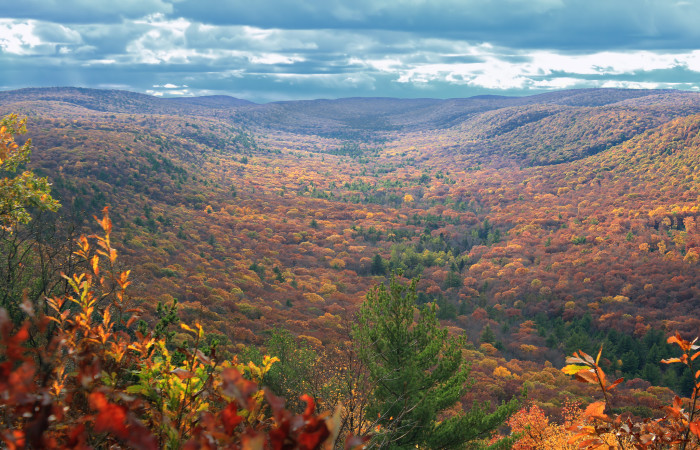 14. An amazing autumn view from the Top Mountain Trail in Bald Eagle State Forest.