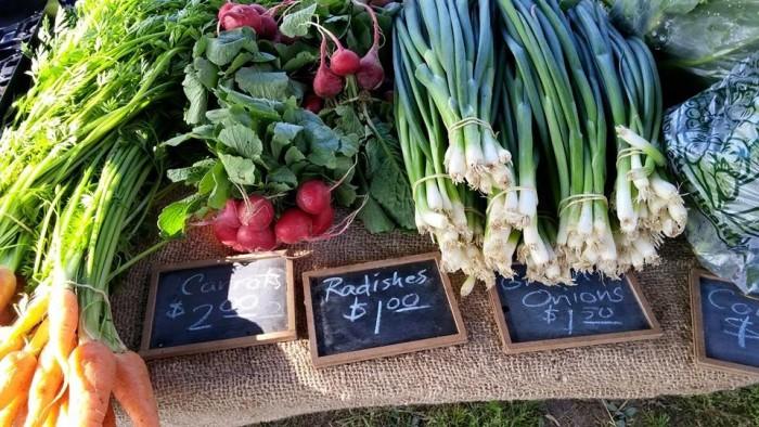 15.2. Greater Polk County Farmers Market, Bolivar