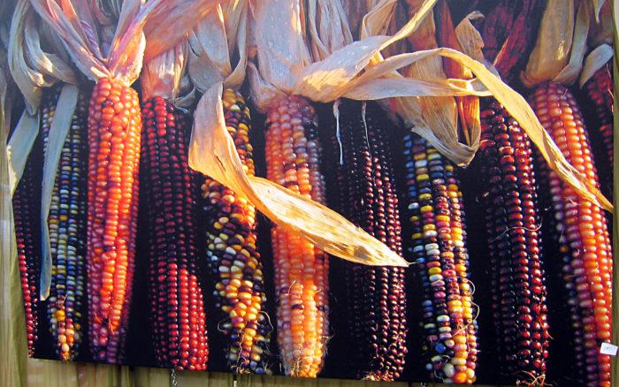 8. Shippensburg Corn Festival