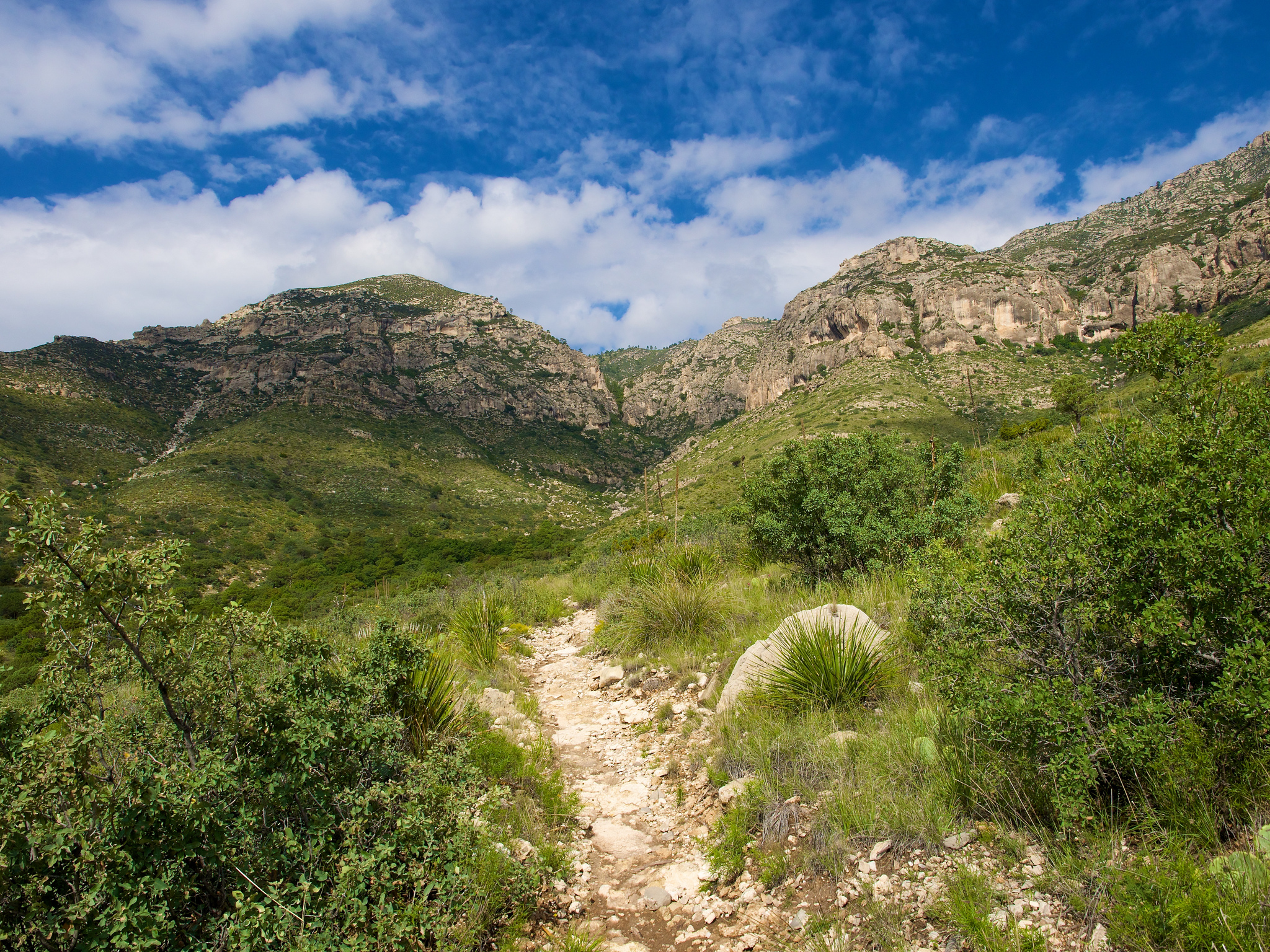 10 Incredible Hikes Under 5 Miles Everyone In Texas Should Take