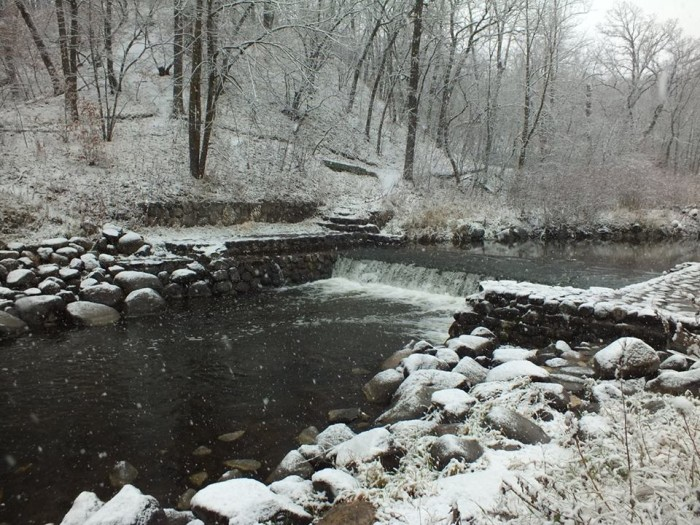 6. Turtle River State Park