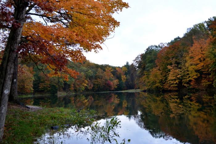 4. Mason Ridge Trail - Morgan Monroe State Park, 2.8 miles