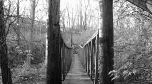This Terrifying Swinging Bridge In Indiana Will Make Your Stomach Drop