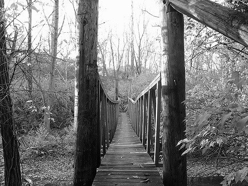richmond swinging bridge