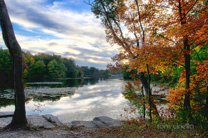 10. Not all states offer four fantastic seasons.
