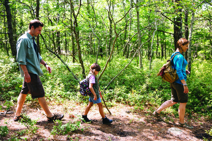 3. Hiking the Pine Hills in Plymouth is an adventure the whole family can enjoy. There are lots of easier trails that smaller children and inexperienced adventurers can handle without a problem.