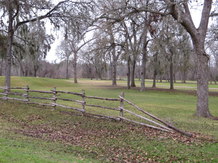 10.  Pitch a tent, have a picnic, just enjoy yourself at Stephen F. Austin Campground.
