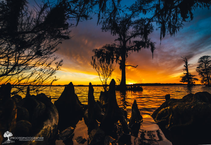 10. A colorful Neuse River sunset and Cypress Shadows as night takes over. Beautiful.