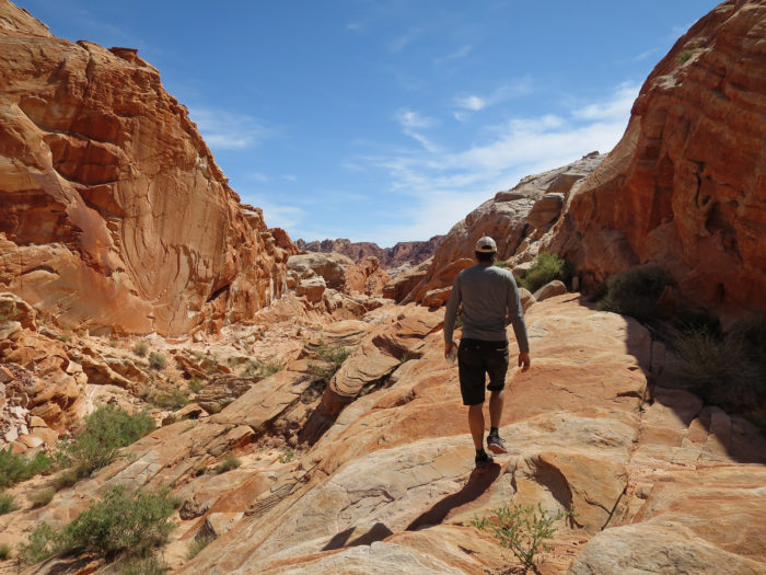 8. Spend a day hiking in the Valley of Fire State Park.