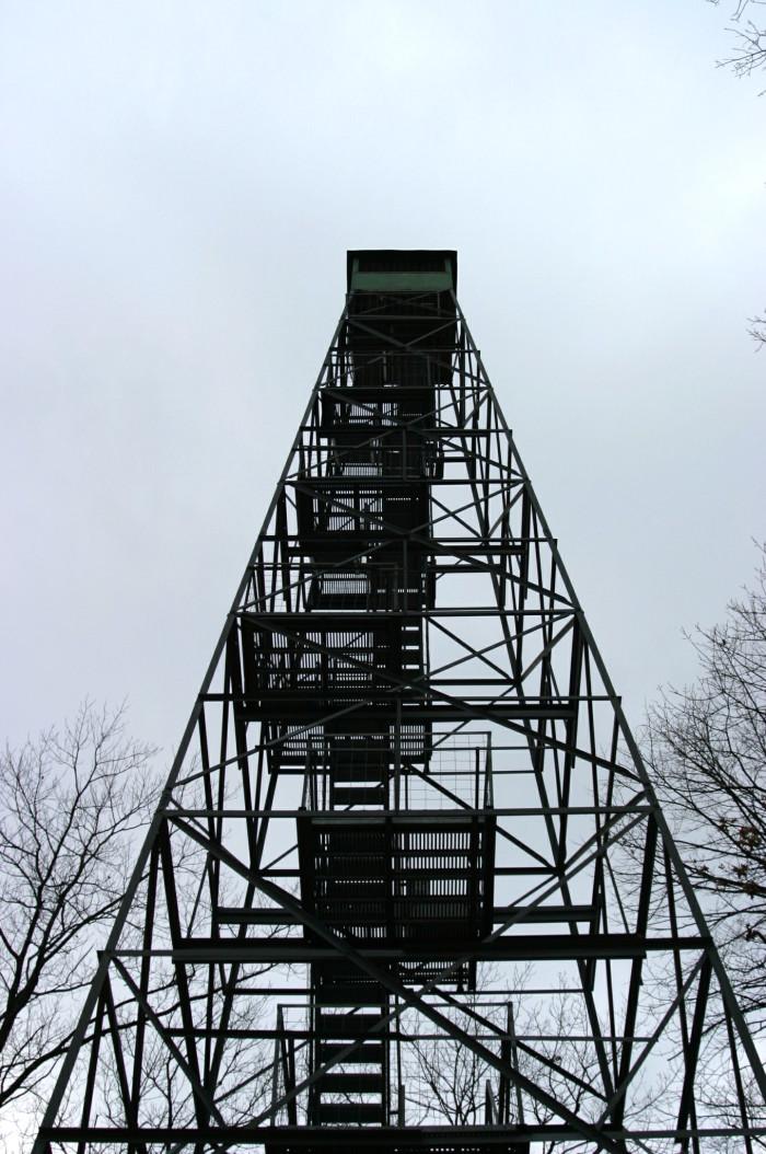 11. Aiton Heights Trail