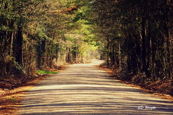 17. Peaceful drives down back roads.