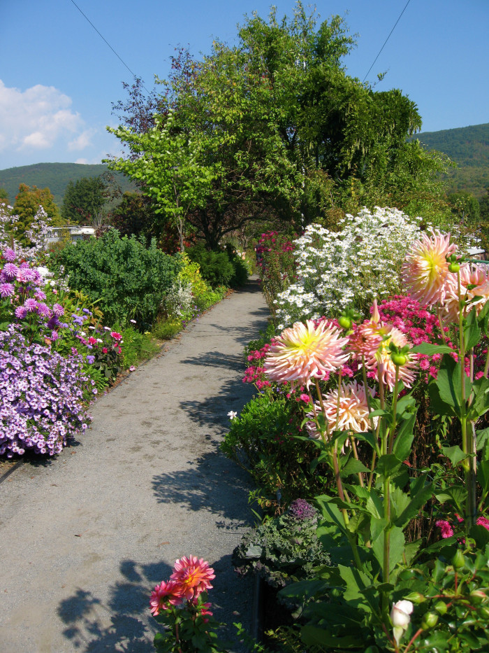 3. The Bridge of Flowers in Shelburne Falls is a blossoming path to total relaxation.