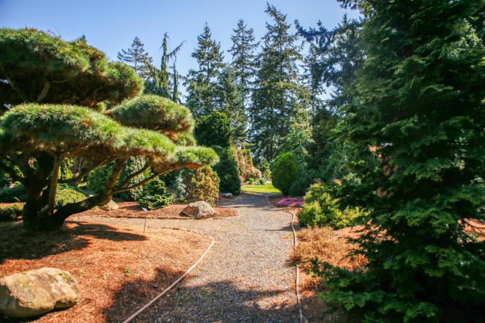 11. Evergreen Arboretum And Gardens, Everett