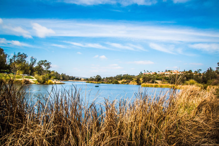 5. Laguna Niguel Regional Park is a perfect place to go for an afternoon where no one will find you.