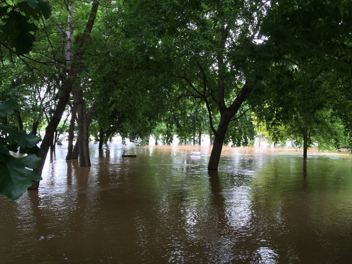 8. In 2015, Fort Smith had 73.93 inches of rainfall. The famously rainy Seattle only had 44.83 inches of precipitation.
