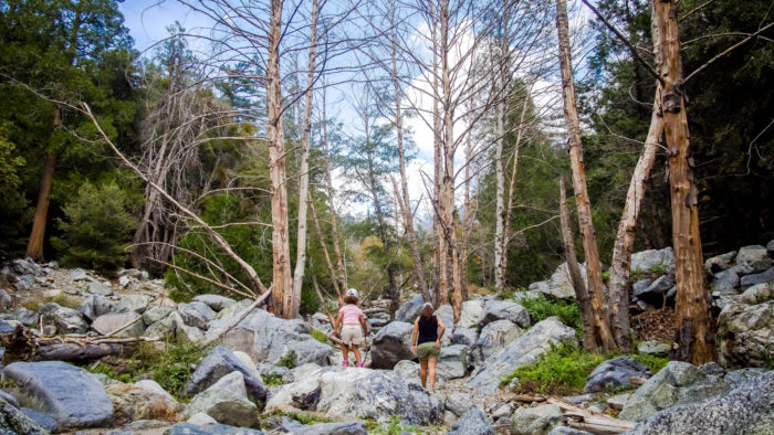 7. A remote hike nestled in the woods on Icehouse Canyon trail.
