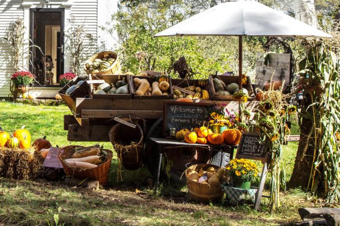 15.  Visit a farmers market.