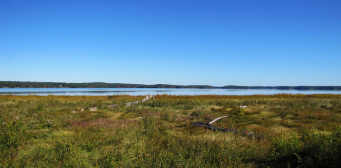 10. Great Bay National Wildlife Refuge, Newington
