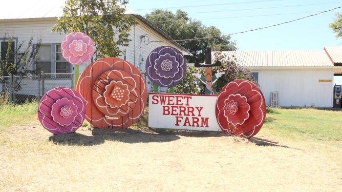 The Best Small Town In The Texas Hill Country