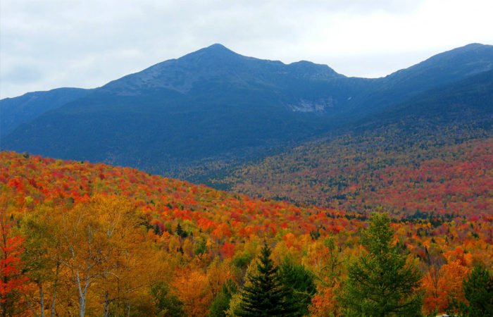 11. New Hampshire is, and will always be, the best state in the nation.