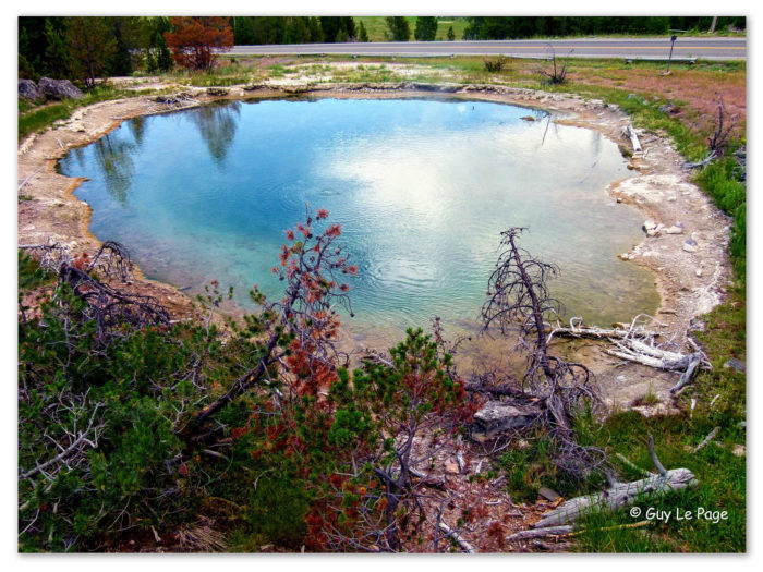 1. The color composition of nature in this picture of Fountain Paint Pot makes it look like a painting.