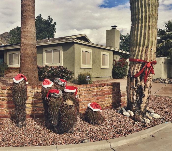 13. We have a funny side, like how some of us decorate for the holidays.