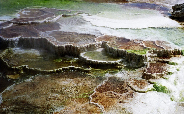 5. Mammoth Hot Springs