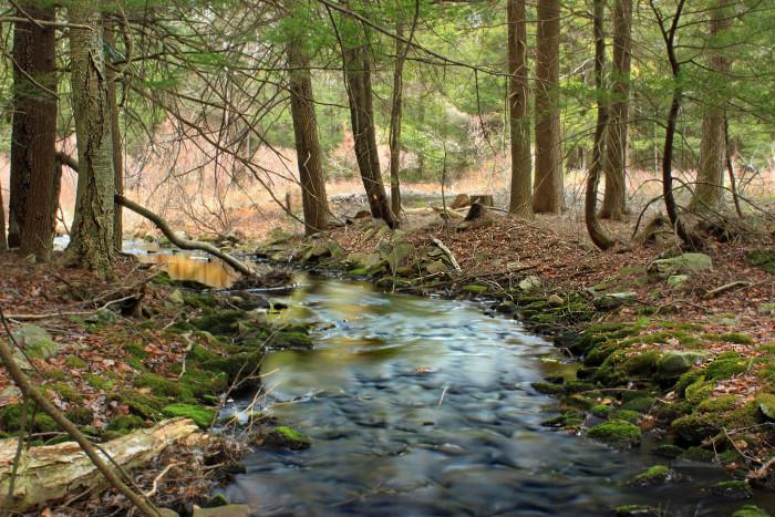 8. Lehigh River