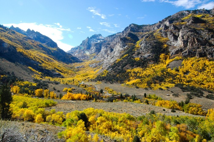 3. ...gorgeous scenic canyons are located throughout the Silver State.