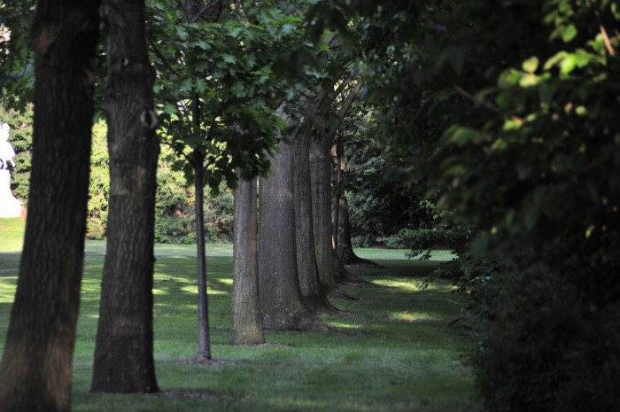 ima gardens