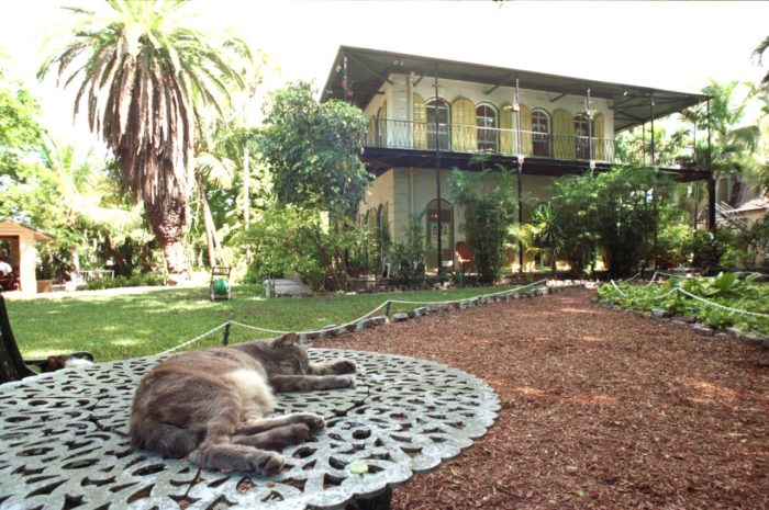10. The Ernest Hemingway Home and Museum in Key West is still home to dozens of six- and seven-toed cats that are actually descended from the writer's cats.