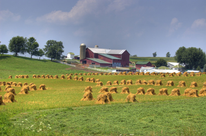 5. The rolling hills of Ohio Amish Country