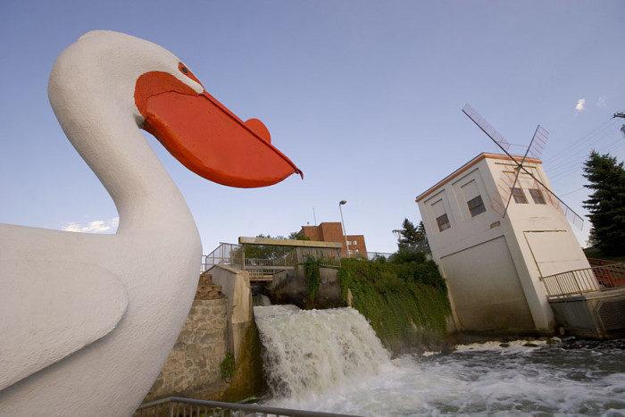 8. Pelican Rapids