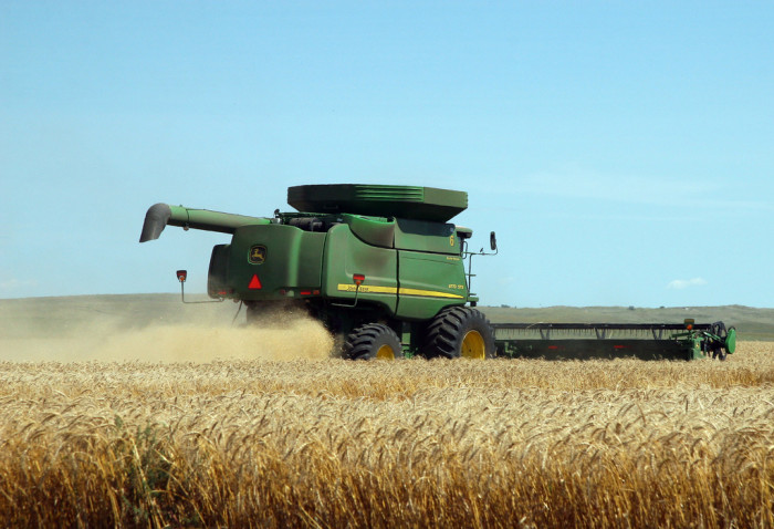 4. Production of spring and durum wheat...