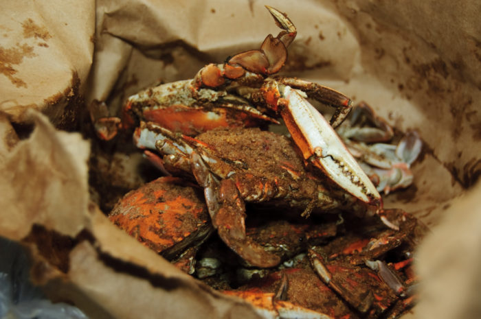 1. Eat ridiculously messy and delicious steamed crabs.