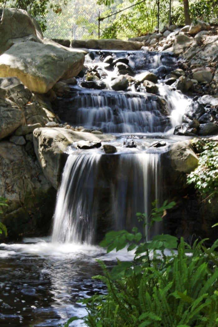 2. Descanso Gardens in La Canada Flintridge
