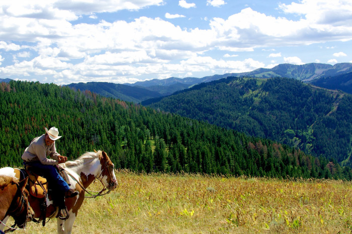3. A cowboy on his horse riding along the ridgeline enjoying the view.