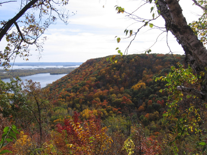 4. Richard J. Dorer Memorial Hardwood State Forest